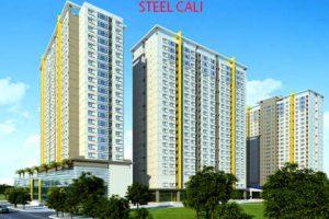 steel_cali-117-au-co